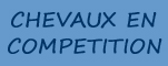 Nos chevaux en comp�tition Competition horses